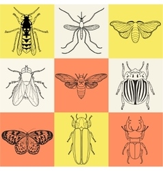 Insect icons set Cicada and stag beetle firefly vector