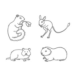 Set 1 rodents in contours vector