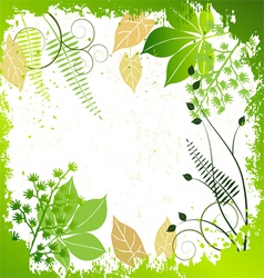 Grunge frame with plants elements vector image vector image