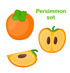 persimmon tasty vegetarian fruit and slices vector image vector image