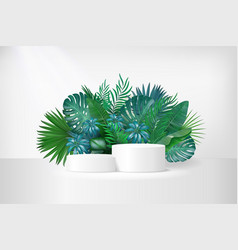 3d display podium with tropical palm leaves vector image