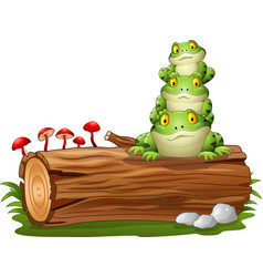 Cartoon frog stacked on tree log vector