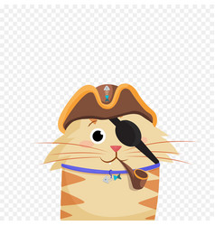 cat pirate wearing pirates hat and eye bandage vector image