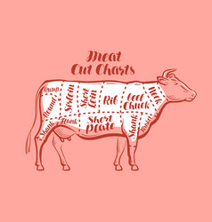 Cow beef meat cuts scheme or diagrams vector