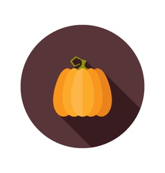 Halloween pumpkin flat circle icon vector