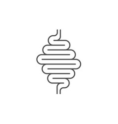 intestines and digestive system line icon vector image