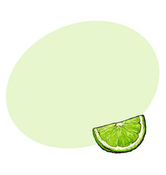 Quarter segment piece of ripe green lime vector