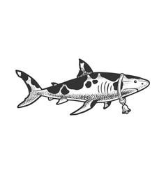 shark cow animal sketch vector image