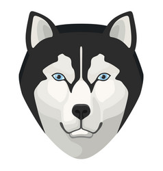 wolf head icon wildlife nature beautiful animal vector image