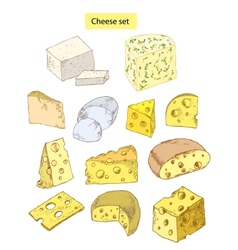 Cheese set detailed vector