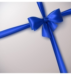 Blue Bow And Ribbon vector image vector image