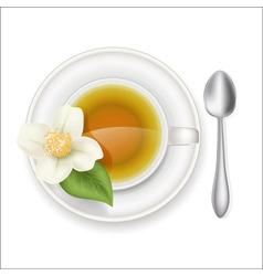 jasmine tea vector image