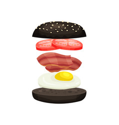 burger from black bun with sesame fresh tomatoes vector image