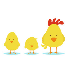 hen mother with little chicks vector image