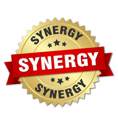 Synergy round isolated gold badge vector