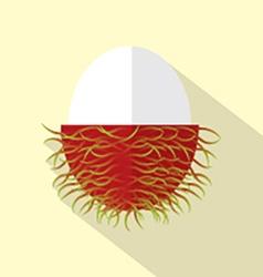 Flat Design Rambutan Icon vector image vector image