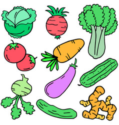 Doodle of vegetable set object vector