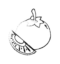 tomato slice food diet healthy sketch vector image vector image