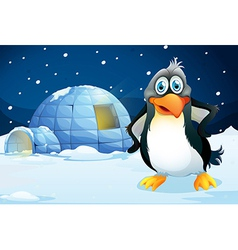 A penguin standing near igloo vector