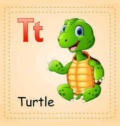 animals alphabet t is for turtle vector image