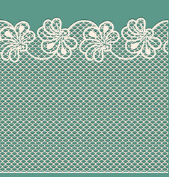 flower lace border on blue background vector image
