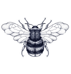 honeybee tattoodotwork tattoosymbol of diligence vector image