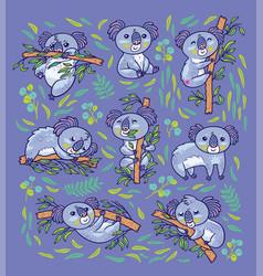 koala a native australian animal in different vector image