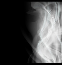 Background with white smoke isolated on a black vector