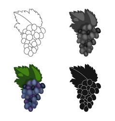 Bunch of grapes icon in cartoon style isolated on vector
