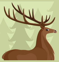 deer with beautiful horns vector image