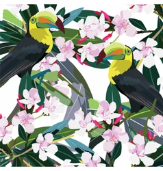 Toucan parrot and Pink flowers branch vector image