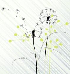dandelions vector image vector image
