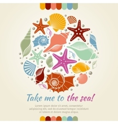 Summer concept with shells and sea stars vector image vector image