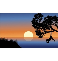 Silhouette of monkey hanging in tree vector image vector image