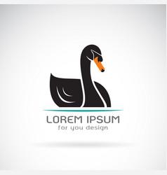 black swan design on white background logo vector image vector image