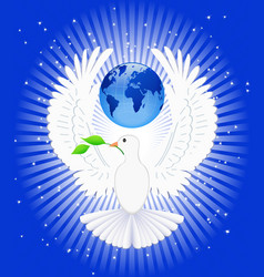 dove and globe vector image