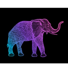 elephant in profile line art boho design vector image