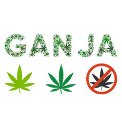 Ganja caption mosaic of marijuana vector