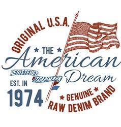 T-shirt typography design USA printing graphics vector image