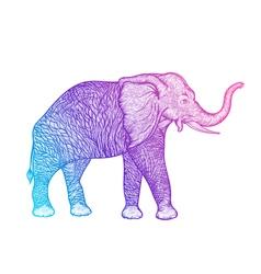 Elephant in profile line art boho design vector