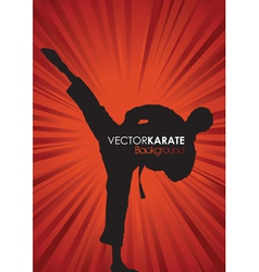 karate background vector image vector image