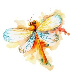Orange watercolor dragonfly vector