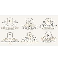 Retro Royal Vintage Shields Luxury logo vector image