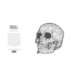 Abstract silhouette polygonal skull human vector