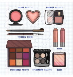 color makeup products vector image