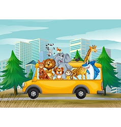 Animals on school bus vector image vector image