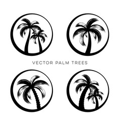 creative palm trees logo design templates vector image