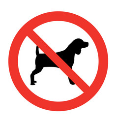 dog not allowed vector image