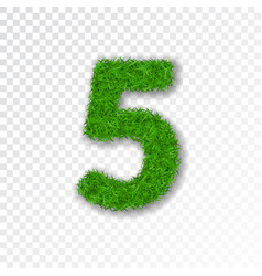 grass number five green number five isolated on vector image