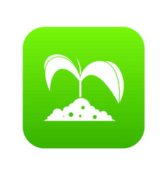 green seedling in soil icon digital green vector image